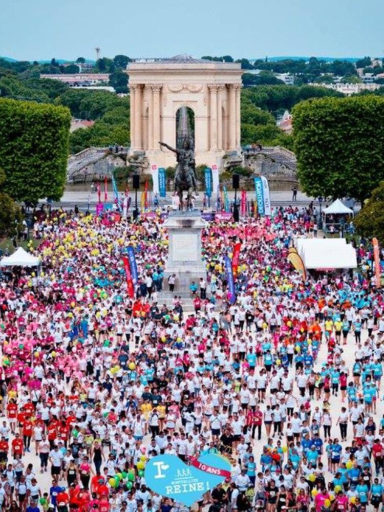 Montpellier Reine banner